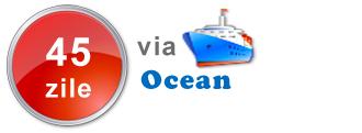livrare via ocean